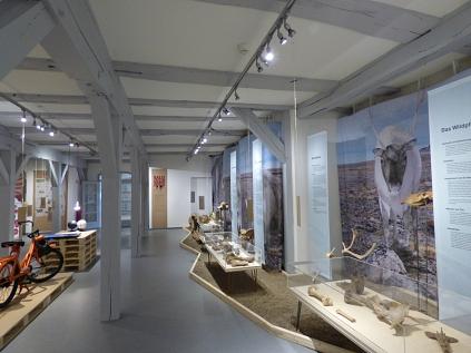 KalteZeitenWarmeZeiten01©Museum Nienburg/Weser
