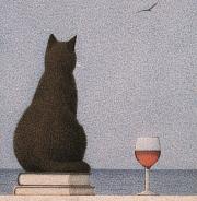 Katzemeer