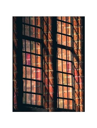 Kirchenfenster Steudte©Regina Steudte